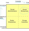 Social Enterprise/ Public Benefit Corporation Movement Gaining Momentum in the U.S.