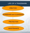 Trademarks – Identifying and Protecting Your Rights